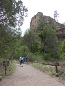 After Crossing the West Fork of the Gila River the trail starts up Cliff Dweller Canyon, heading to the towering promontory of Gila Conglomerate in which the Dwellings are located