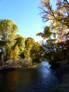 fall along the Gila River in New Mexico