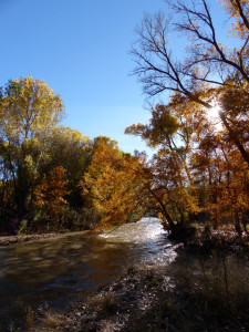 fall along the Gila River