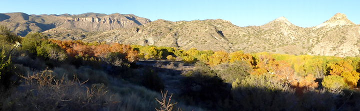 Fall in the Upper Box of the Gila, New Mexico
