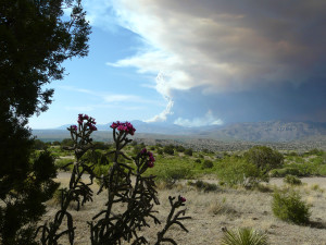 whitewater-baldy fire in gila wilderness