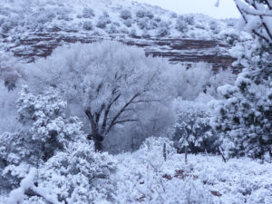 snow at Casitas de Gila