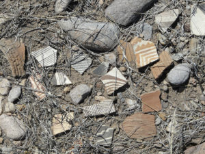 Mogollon Culture pottery shards