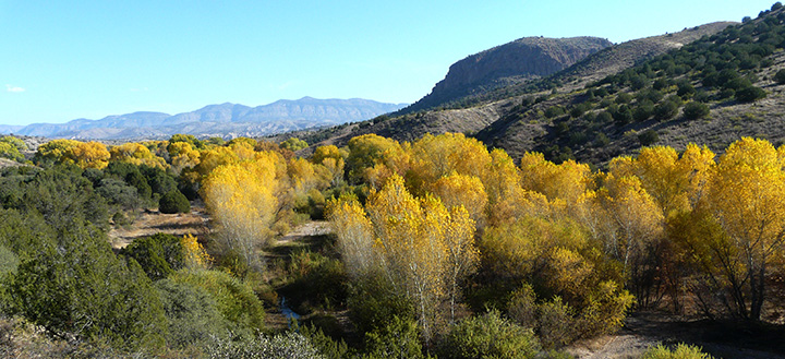 hiking in the gila wilderness