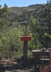 Bird feeding station