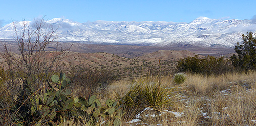 hiking the Gila in Winter